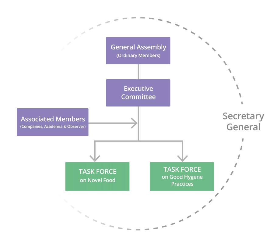 executive committee diagram